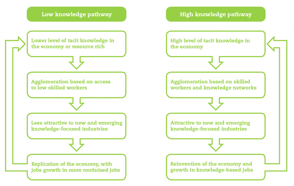 Century-of-Cities-high-and-low-knowledge-pathways