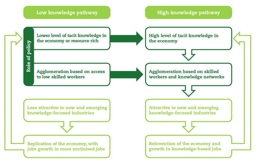 Knowledge pathways and the role of policy-01